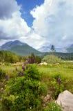 Höga Tatras, mounines, Slovakien royaltyfri foto
