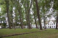 Höga träd i borggård av beguinagen i den flemish staden bruges i b Fotografering för Bildbyråer