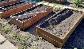 Höga trädgårdsängar arkivfoto