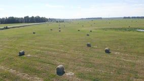Högar av hö på ett lantbrukfält, bästa sikt stock video