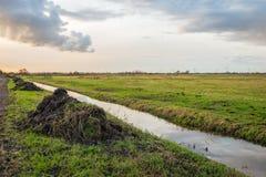Högar av växtrest och annan avfalls, når att ha muddrat polder royaltyfri fotografi