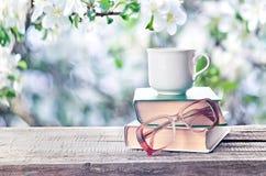 Högen av böcker, exponeringsglas och koppen fjädrar utomhus eller sommartid Arkivfoto