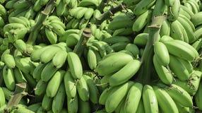 Högen av den gröna bananen kallade kluay khai Fotografering för Bildbyråer