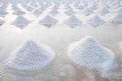Högen av havet som är salt i salt jordbruksprodukterlantgård för original, gör från naturligt Royaltyfri Foto