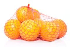 Apelsiner i stränga hänger lös Royaltyfri Fotografi