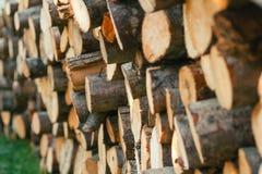 Högen av trä loggar Royaltyfria Foton