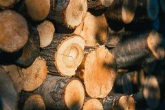 Högen av trä loggar royaltyfria bilder
