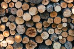 Högen av trä loggar Arkivbild
