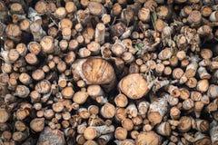Högen av trä loggar in lastbilen Arkivfoton