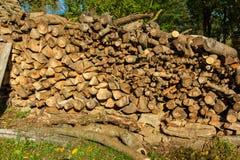 Högen av trä loggar in trädgården arkivfoton