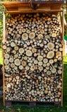Högen av trä loggar in trädgården royaltyfri foto