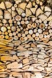 Högen av trä loggar in trädgården royaltyfri bild