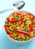 Högg av grönsaker, färgrika grönsaker royaltyfria foton