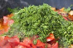Högg av mogna tomater med gräsplaner Royaltyfri Foto