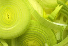 högg av nytt grönsaker Arkivbild