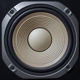 Högkvalitativa högtalare Det Hifi solida systemet shoppar in för solid anteckna studio Yrkesmässig hifi- kabinett högtalareask hö royaltyfria foton
