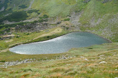 höglands- lake Royaltyfri Foto