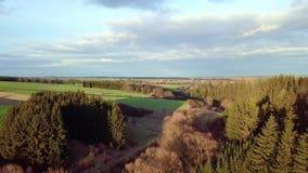 Höglands- landskap för flyg- bygd med skogen arkivfilmer