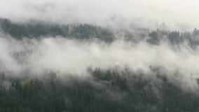 Höglands- stad som ses till och med moln stock video