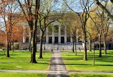 Högskolauniversitetsområde royaltyfri foto