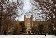 Högskolauniversitetsområde arkivbilder
