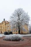 Högstadiumbyggnad bland hoar glaserade träd i kall vinterdag Arkivbilder