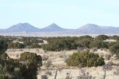 Högt ökenlandskap nära Santa Fe som är ny - Mexiko Fotografering för Bildbyråer