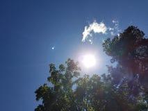Högt övre för sol Royaltyfri Fotografi