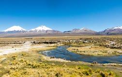 Högt Andean tundralandskap i bergen av Anderna arkivfoton