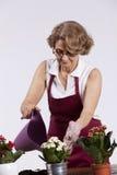Högt arbeta i trädgården för kvinna Arkivfoton