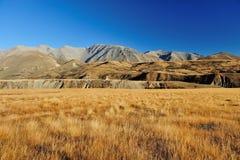 Högt berg i Nya Zeeland Arkivbilder