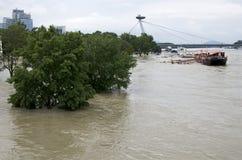 Högt vatten på Donau i Bratislava, Slovakien Royaltyfri Fotografi