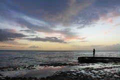 Högtidlig kontur som vänder mot det karibiska havet royaltyfria foton