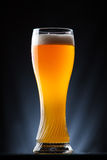 Högväxt exponeringsglas av öl över en mörk bakgrund Royaltyfri Fotografi