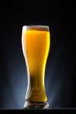 Högväxt exponeringsglas av öl över en mörk bakgrund Arkivbild
