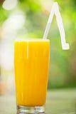 Högväxt exponeringsglas av orange fruktsaft mot en naturlig bakgrund Arkivfoto