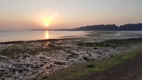 Högväxt för zoom solnedgång ut fotografering för bildbyråer
