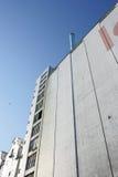 högväxt fabrik Royaltyfri Bild