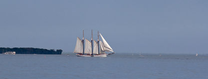 högväxt segla ship Arkivbild