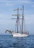 Högväxt skepp Fotografering för Bildbyråer