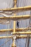 Högväxt skepp Royaltyfria Bilder