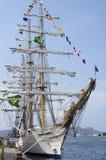 Högväxt skepp av den brasilianska marinen, Cisne Branco Arkivfoton