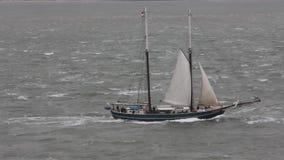 Högväxt skepp som seglar av Vlissingen, Nederländerna stock video