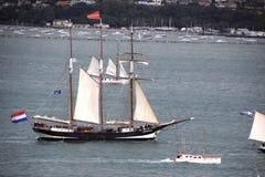 Högväxt skepp Tecla i Auckland Royaltyfri Foto