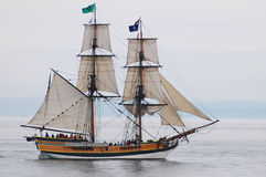 Högväxt skeppdam Washington Arkivfoton