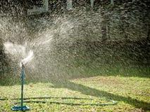 Högväxt spridare som bevattnar gräsmattan med morgonsolljus royaltyfria foton