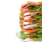 högväxt tomat för skinkagrönsallatsmörgås Royaltyfri Fotografi