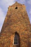 högväxt torn Arkivfoton