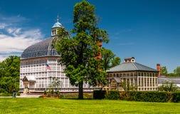 Högväxt träd och Howard Peters Rawlings Conservatory i druidH Arkivfoton