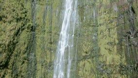 Högväxt vattenfall i Maui, Hawaii, med ljudsignal. stock video